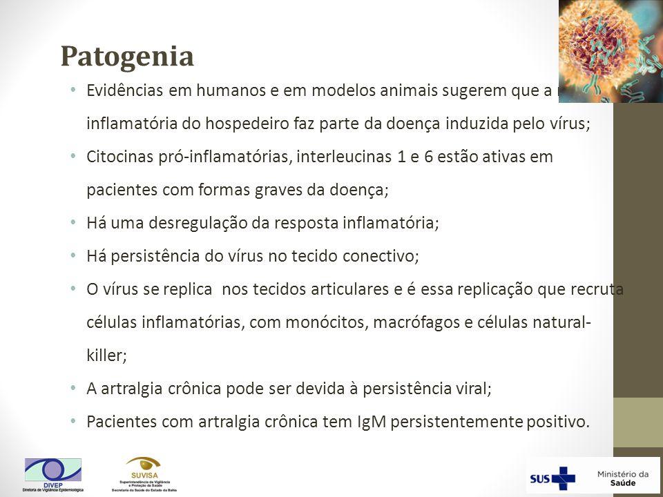 Patogenia Evidências em humanos e em modelos animais sugerem que a resposta inflamatória do hospedeiro faz parte da doença induzida pelo vírus;