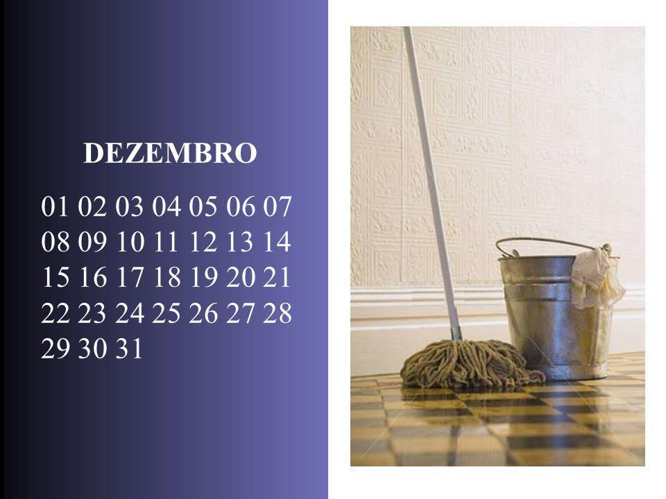 DEZEMBRO 01 02 03 04 05 06 07 08 09 10 11 12 13 14 15 16 17 18 19 20 21 22 23 24 25 26 27 28 29 30 31.