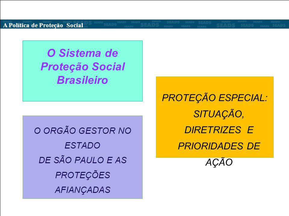 O Sistema de Proteção Social Brasileiro