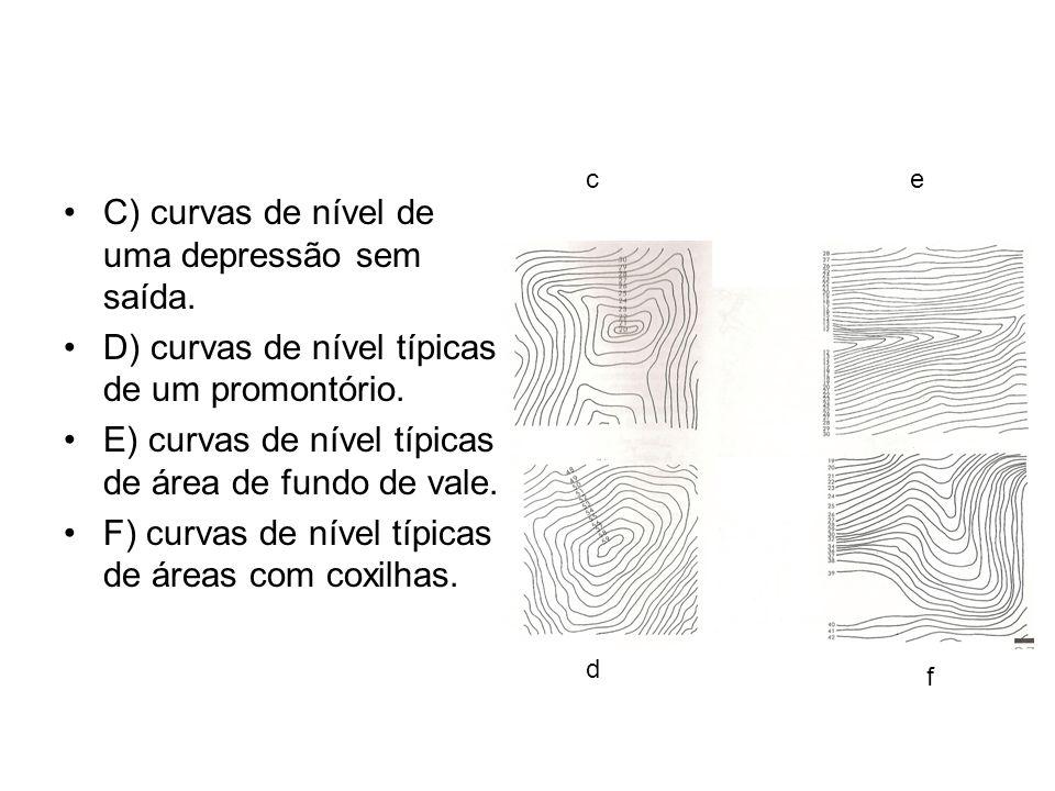 C) curvas de nível de uma depressão sem saída.