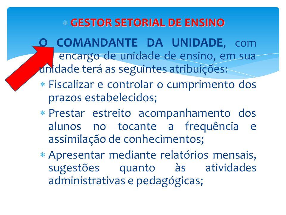 GESTOR SETORIAL DE ENSINO