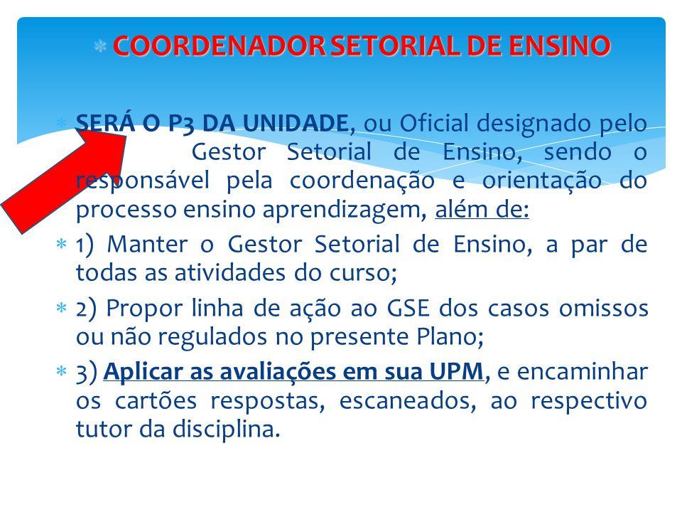 COORDENADOR SETORIAL DE ENSINO