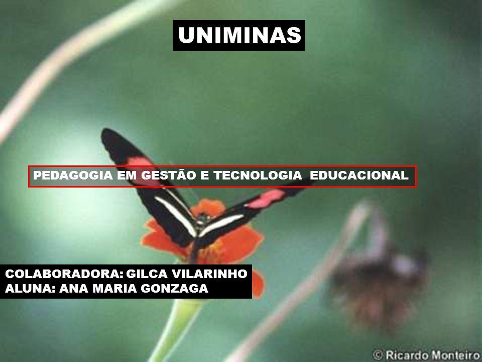 UNIMINAS PEDAGOGIA EM GESTÃO E TECNOLOGIA EDUCACIONAL