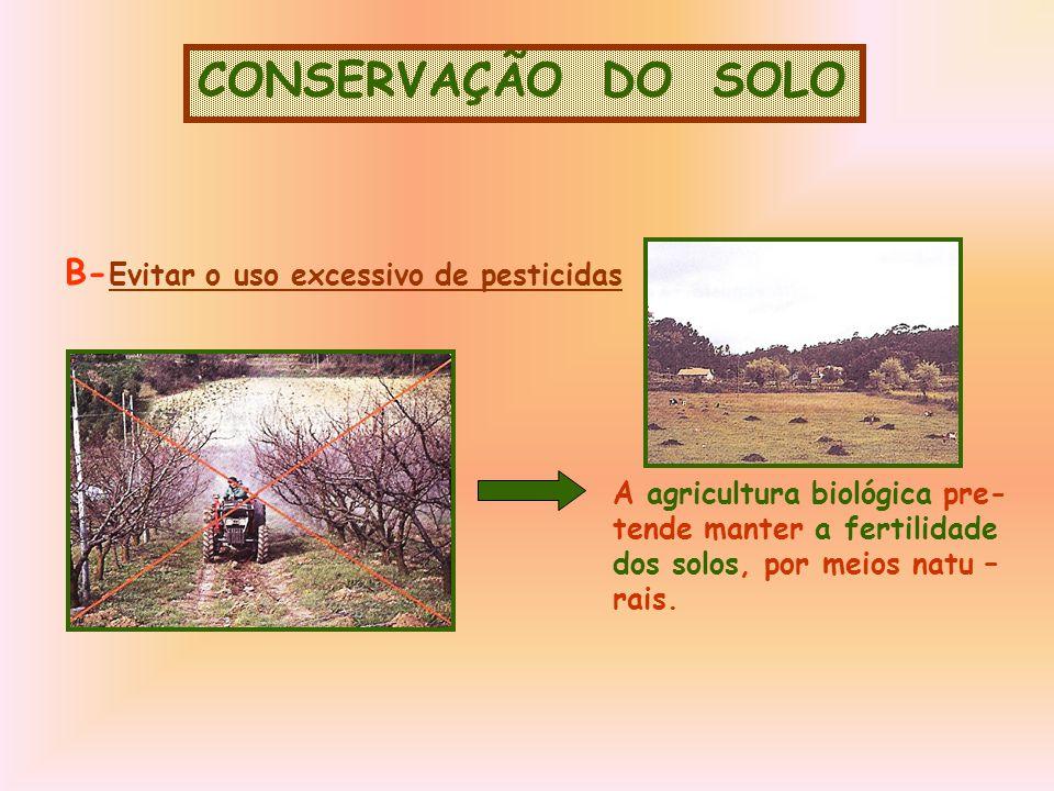 CONSERVAÇÃO DO SOLO B-Evitar o uso excessivo de pesticidas