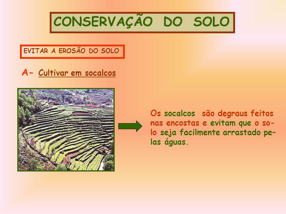 CONSERVAÇÃO DO SOLO A- Cultivar em socalcos