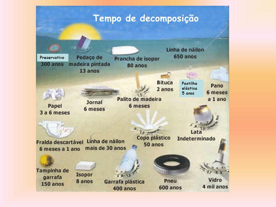 Tempo de decomposição Preservativo Pastilha elástica 5 anos
