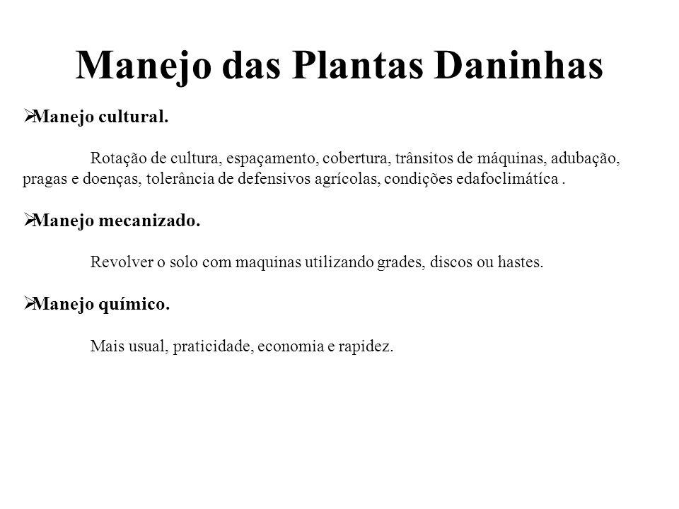 Manejo das Plantas Daninhas
