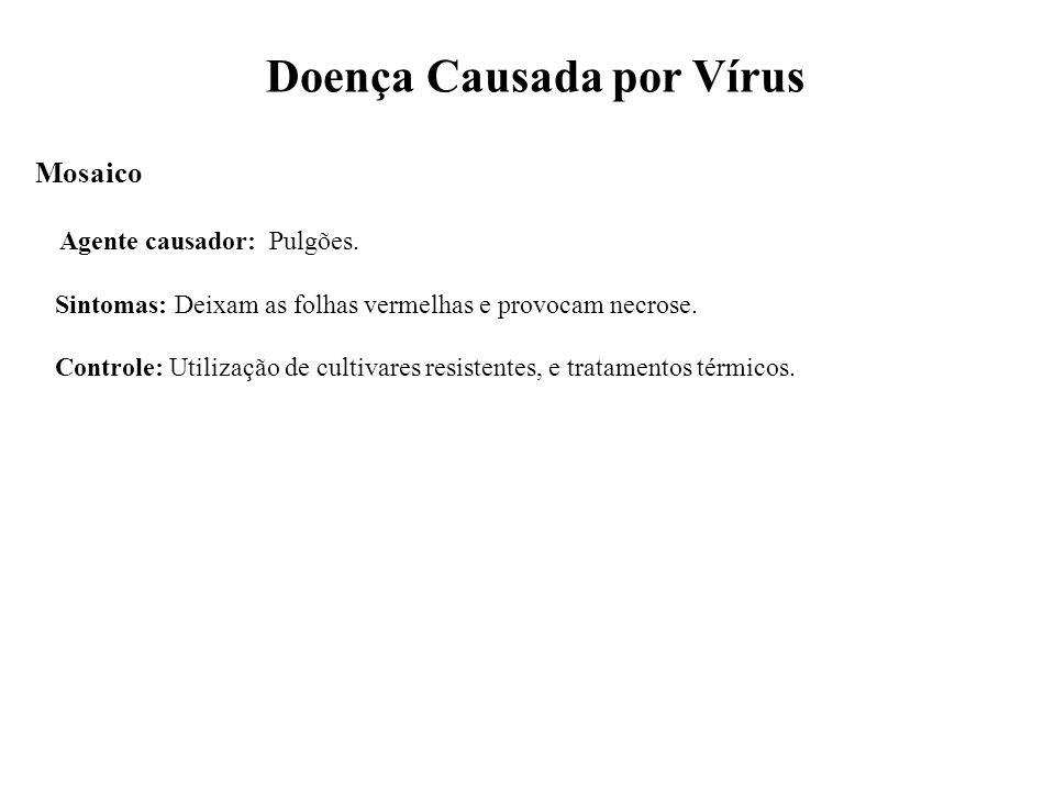 Doença Causada por Vírus