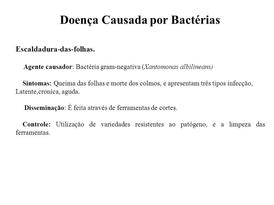 Doença Causada por Bactérias