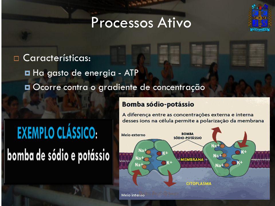 Processos Ativo Características: Ha gasto de energia - ATP