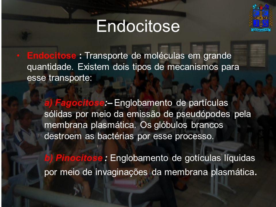 Endocitose Endocitose : Transporte de moléculas em grande quantidade. Existem dois tipos de mecanismos para esse transporte: