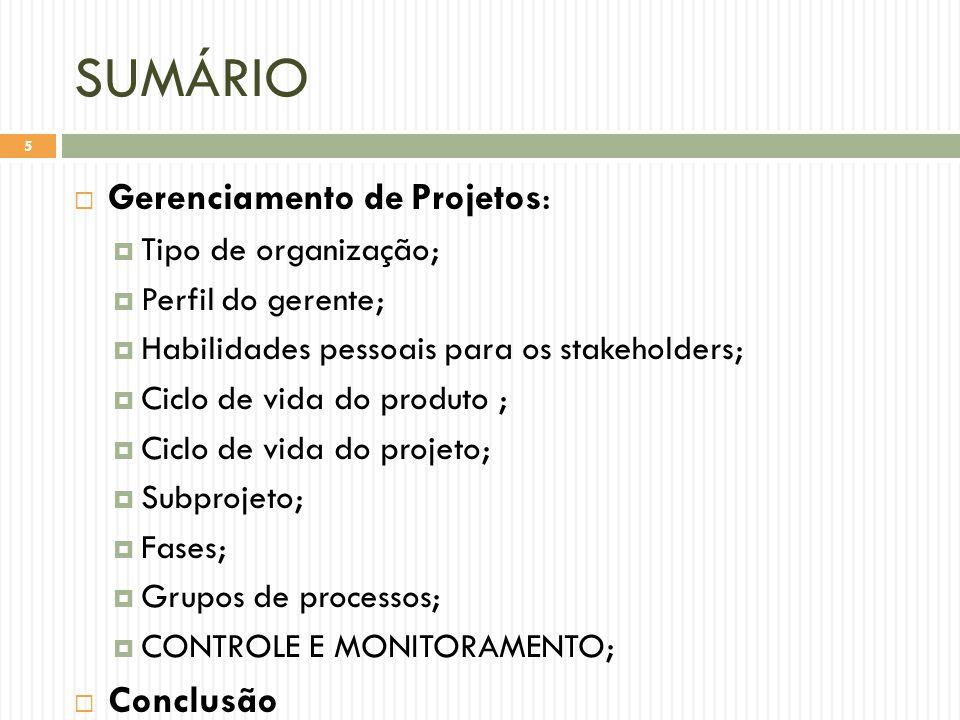 SUMÁRIO Gerenciamento de Projetos: Conclusão Tipo de organização;