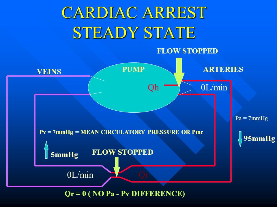 CARDIAC ARREST STEADY STATE