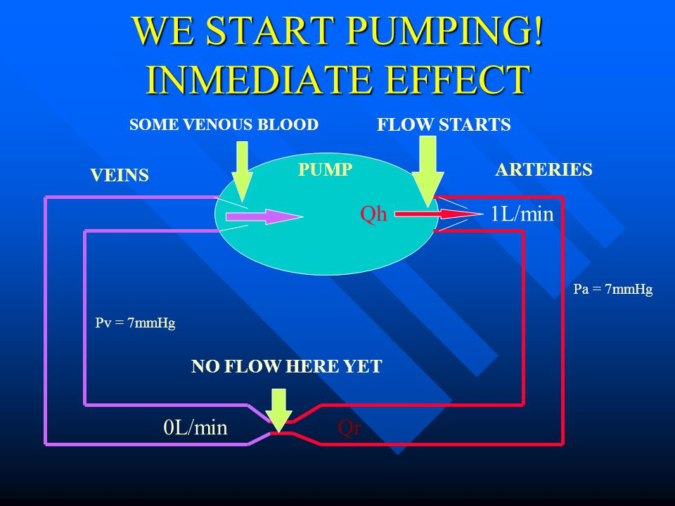 WE START PUMPING! INMEDIATE EFFECT