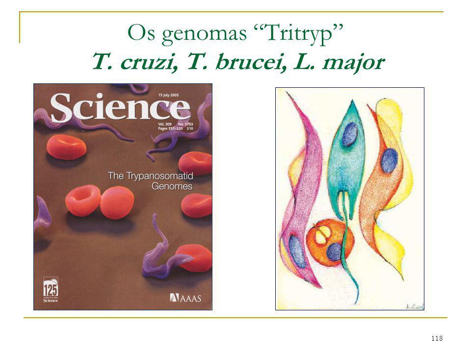 Os genomas Tritryp T. cruzi, T. brucei, L. major
