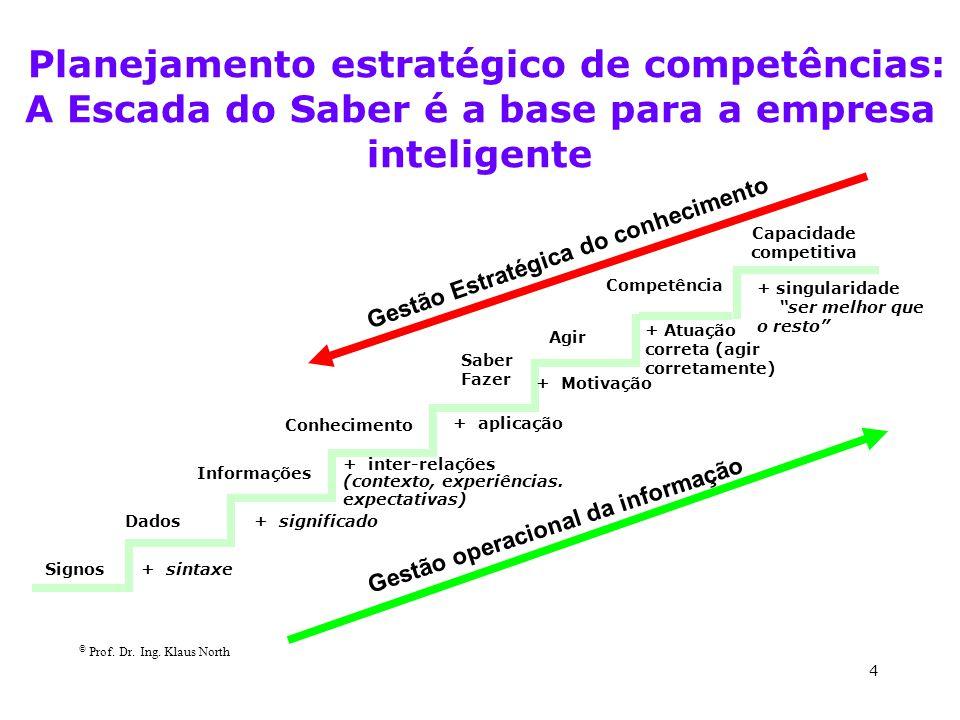 Capacidade competitiva Gestão operacional da informação
