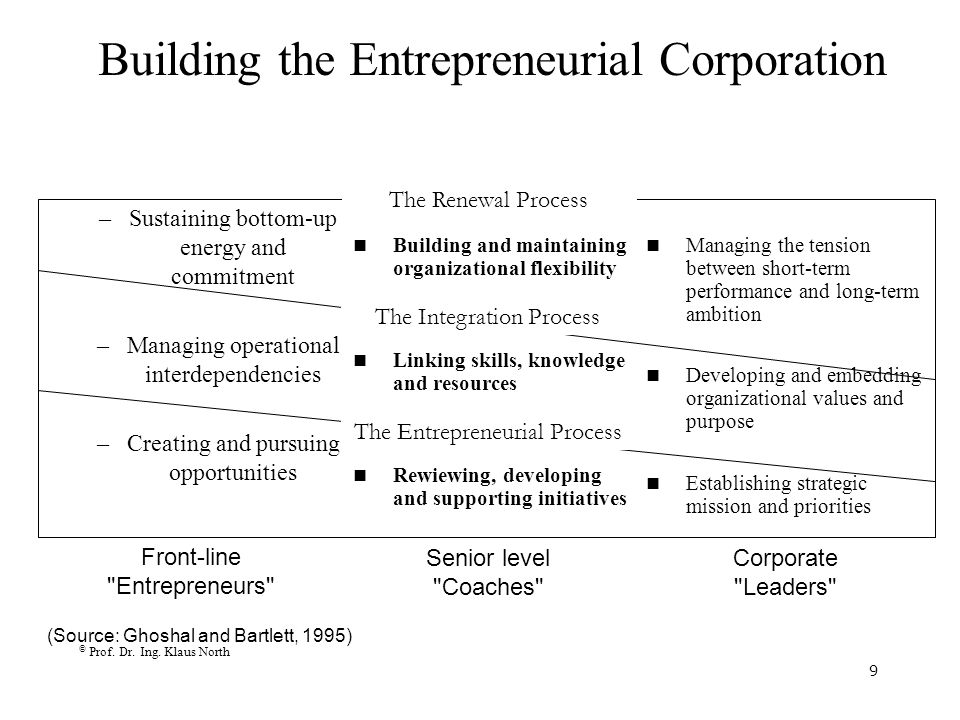 Building the Entrepreneurial Corporation