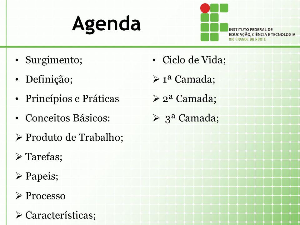 Agenda Surgimento; Definição; Princípios e Práticas Conceitos Básicos: