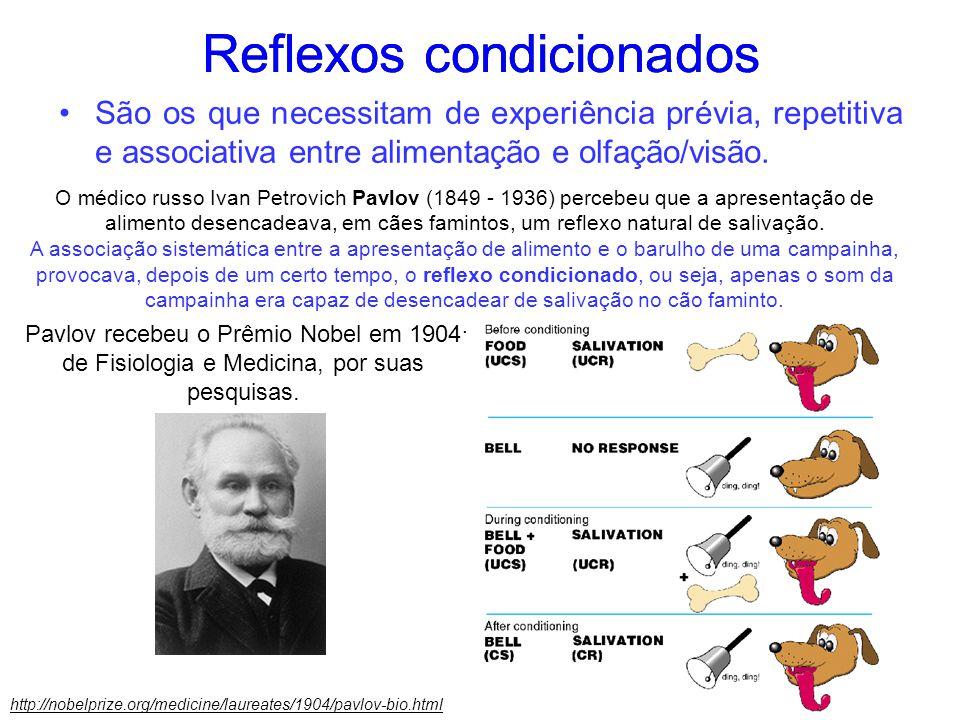 Reflexos condicionados