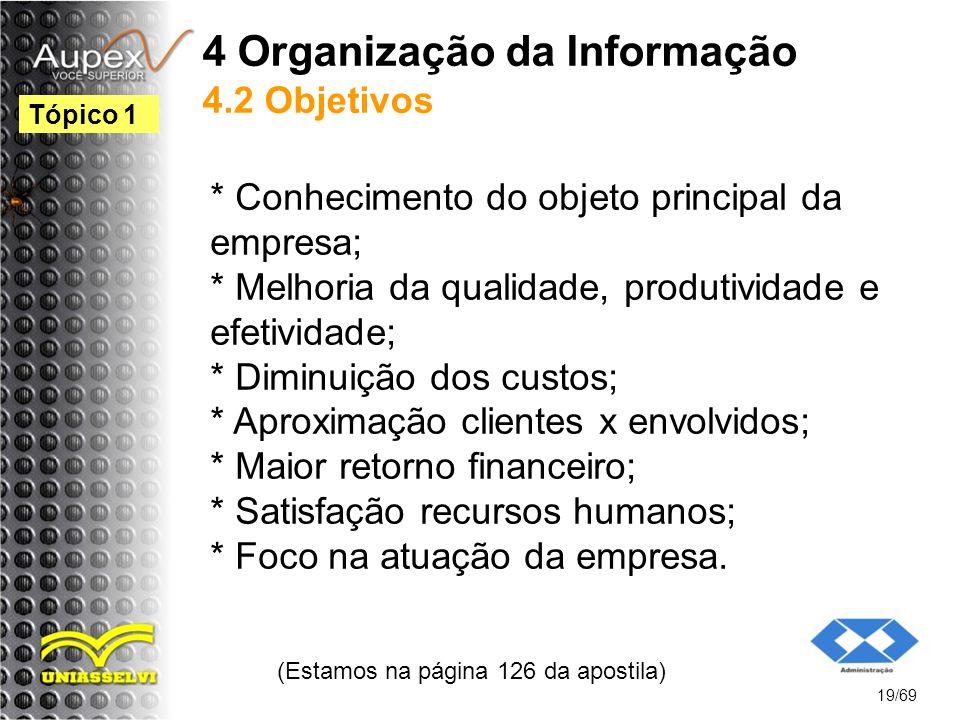 4 Organização da Informação 4.2 Objetivos