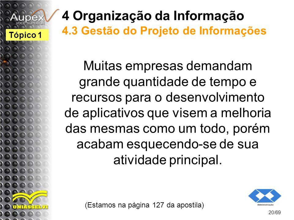 4 Organização da Informação 4.3 Gestão do Projeto de Informações