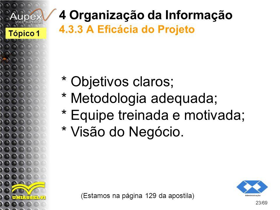 4 Organização da Informação 4.3.3 A Eficácia do Projeto