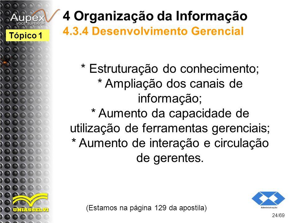 4 Organização da Informação 4.3.4 Desenvolvimento Gerencial