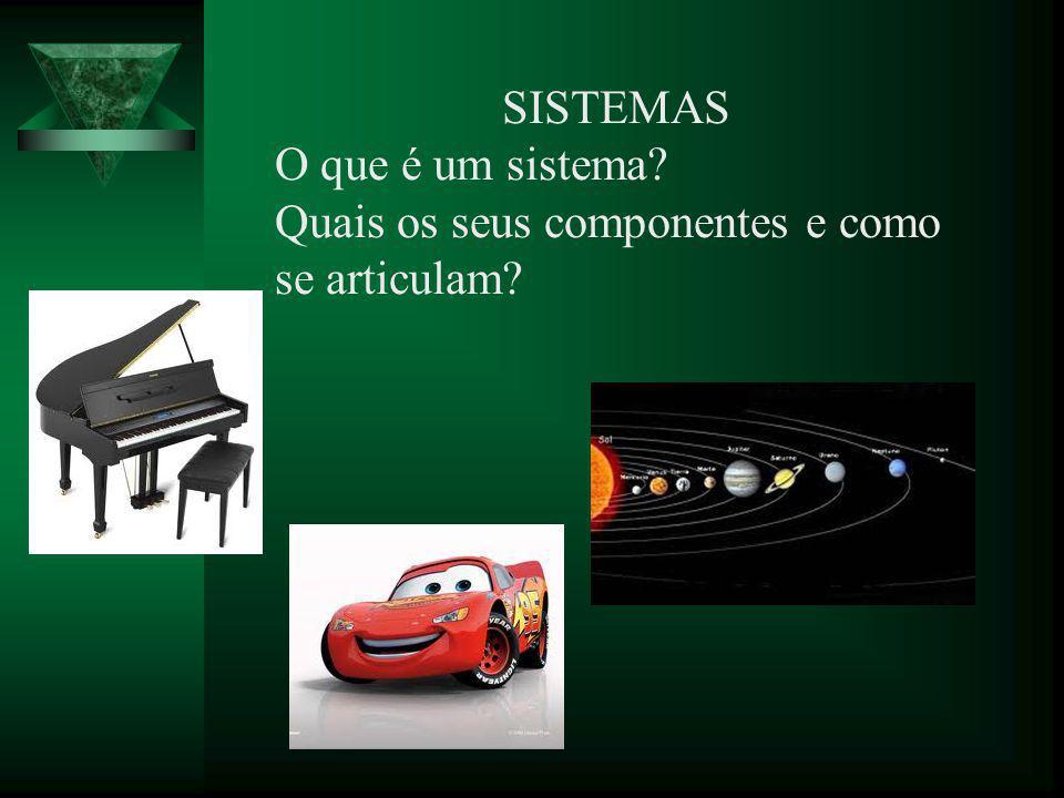 SISTEMAS O que é um sistema Quais os seus componentes e como se articulam