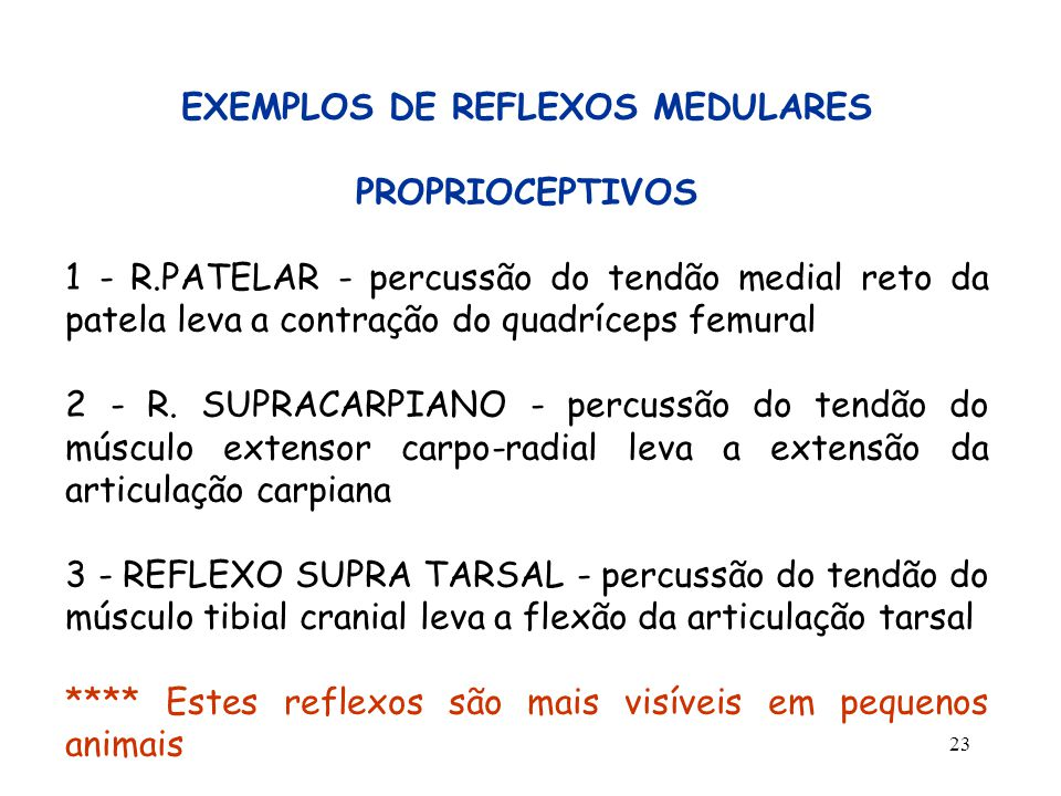 EXEMPLOS DE REFLEXOS MEDULARES