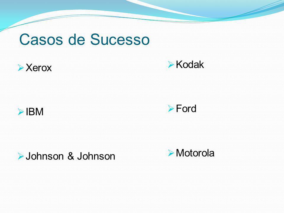 Casos de Sucesso Kodak Ford Motorola Xerox IBM Johnson & Johnson