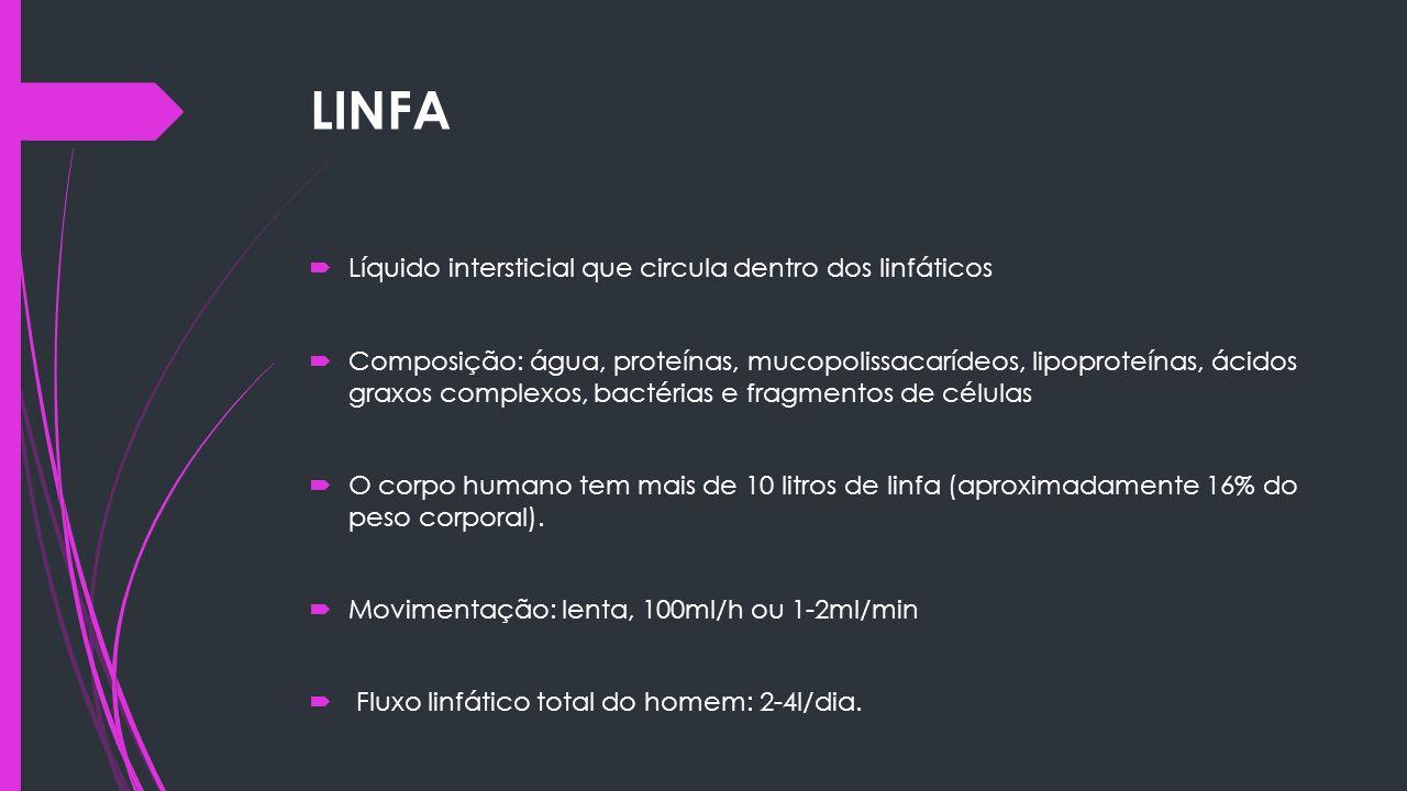 LINFA Líquido intersticial que circula dentro dos linfáticos