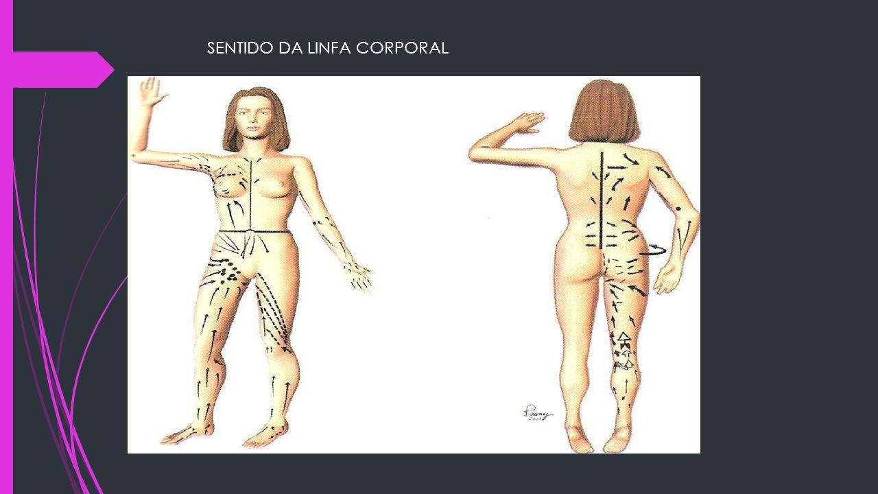 SENTIDO DA LINFA CORPORAL