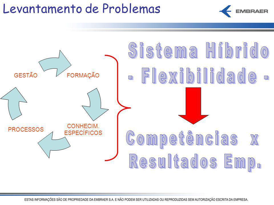 Sistema Híbrido - Flexibilidade - Competências x Resultados Emp.