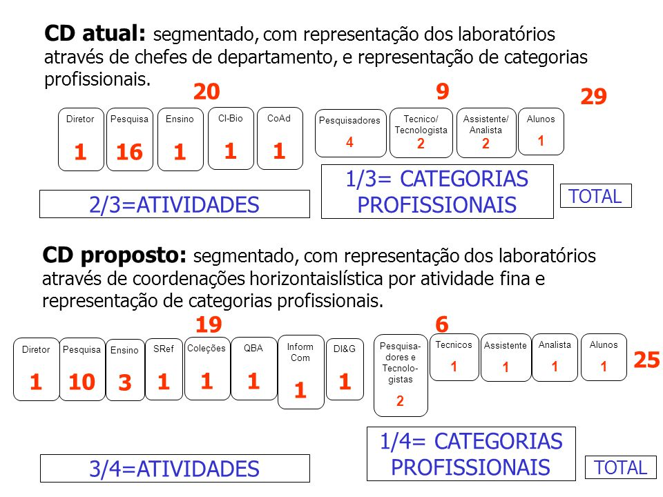 1/3= CATEGORIAS PROFISSIONAIS 2/3=ATIVIDADES
