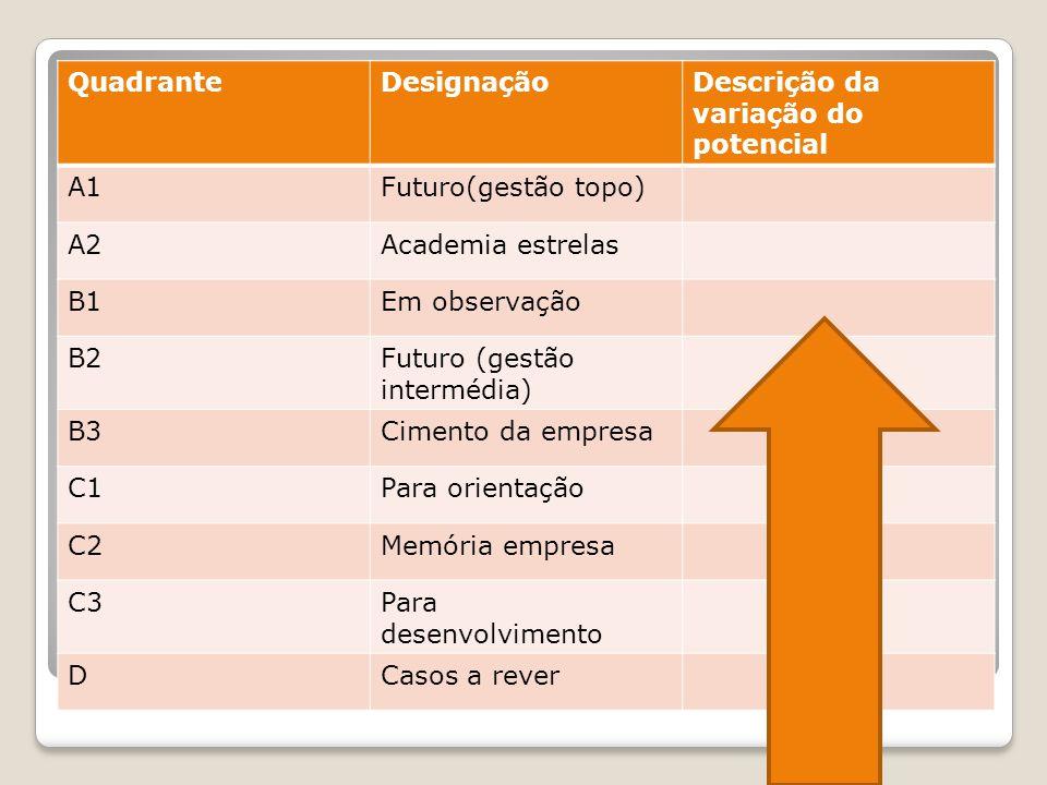 Quadrante do talento Quadrante Designação