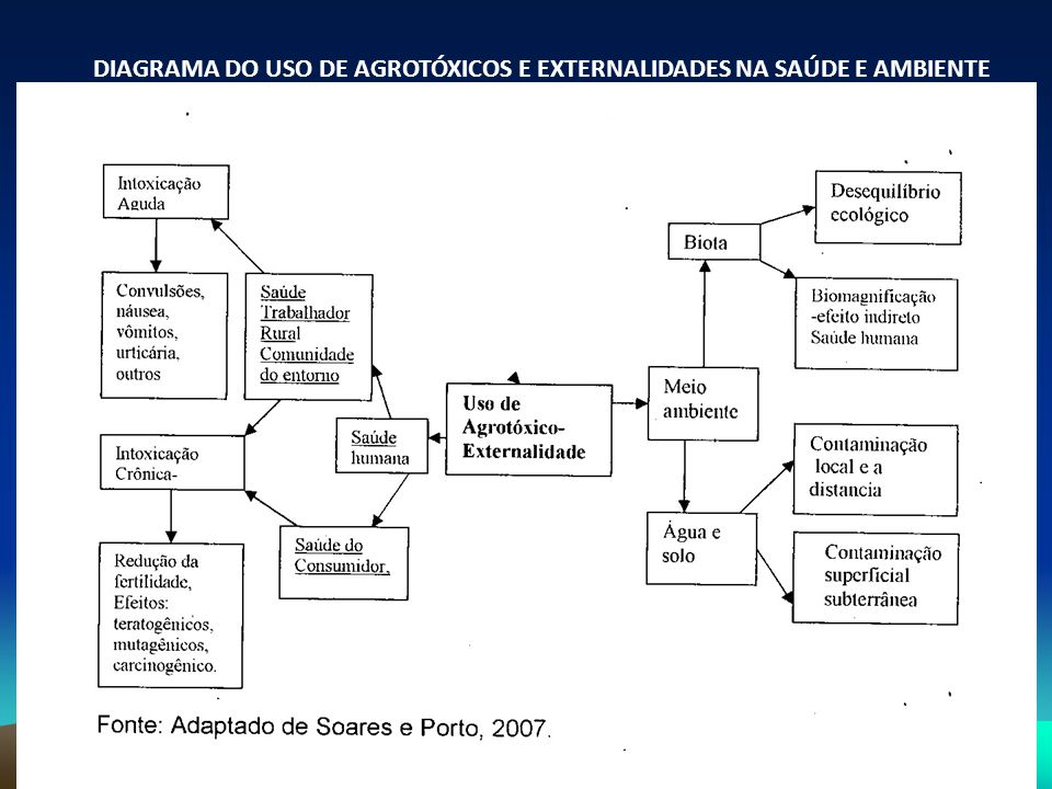 DIAGRAMA DO USO DE AGROTÓXICOS E EXTERNALIDADES NA SAÚDE E AMBIENTE