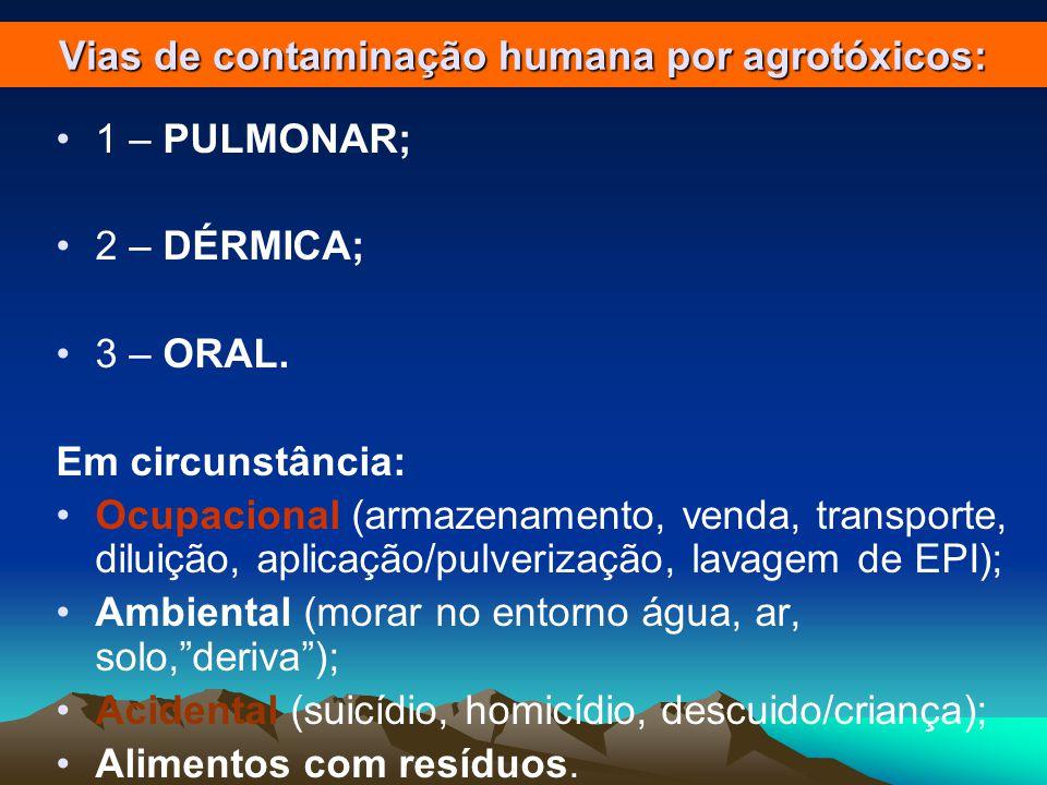 Vias de contaminação humana por agrotóxicos: