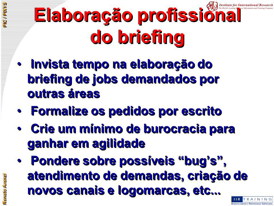 Elaboração profissional do briefing