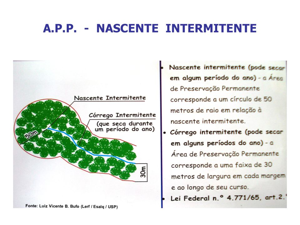A.P.P. - NASCENTE INTERMITENTE