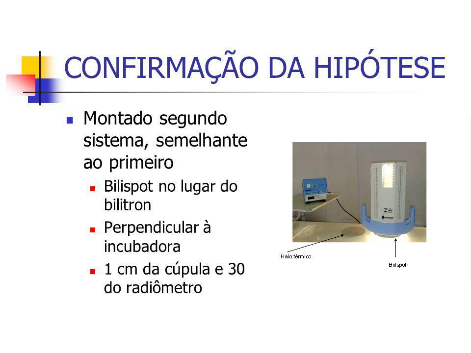 CONFIRMAÇÃO DA HIPÓTESE