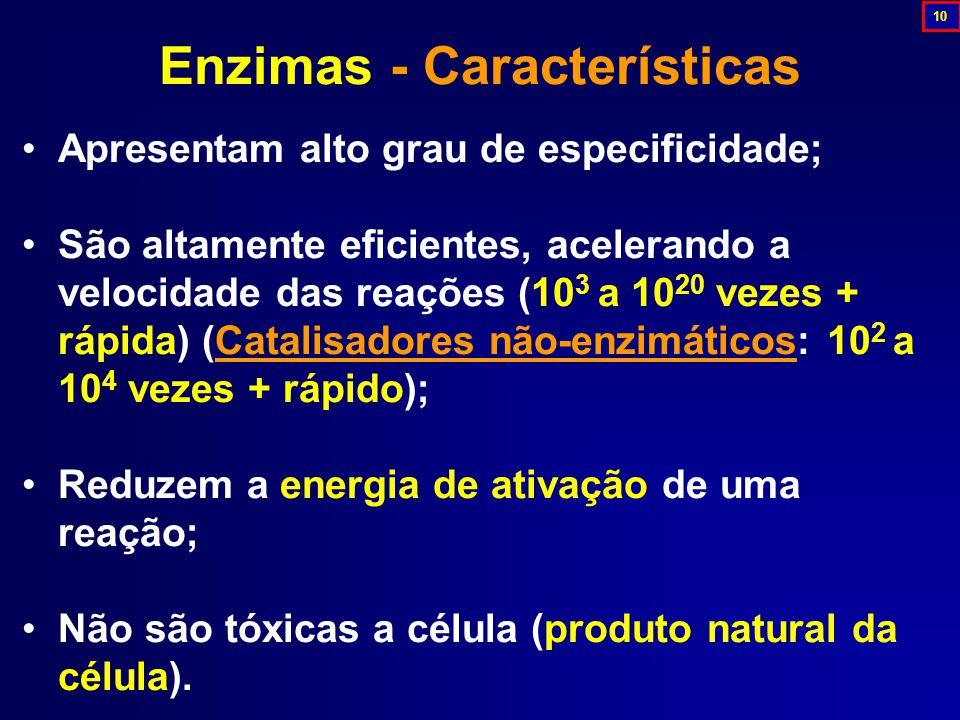 Enzimas - Características
