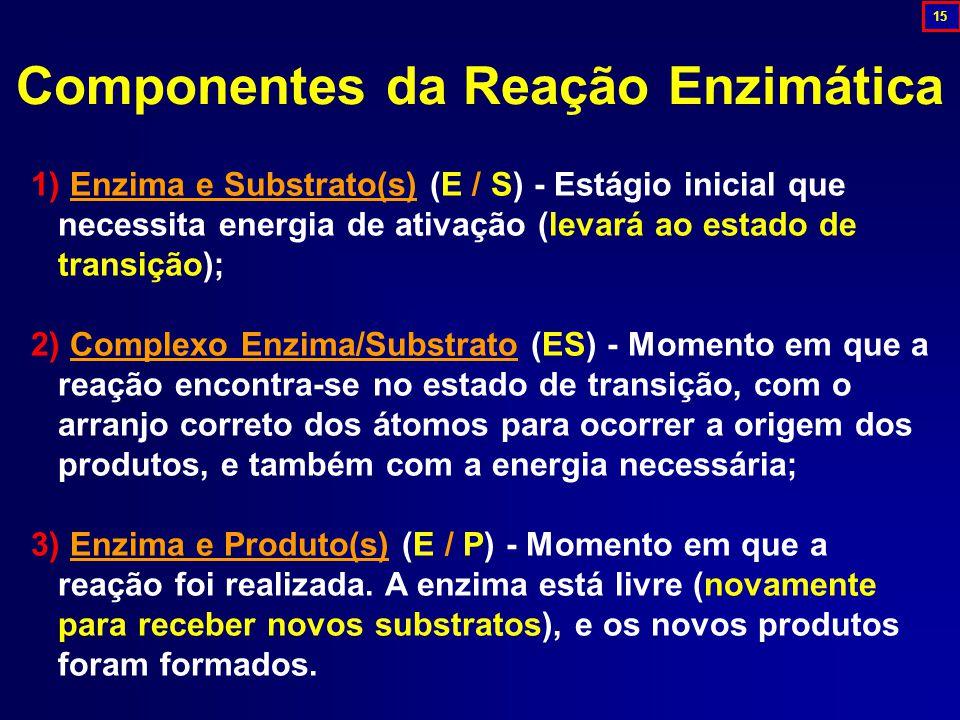 Componentes da Reação Enzimática