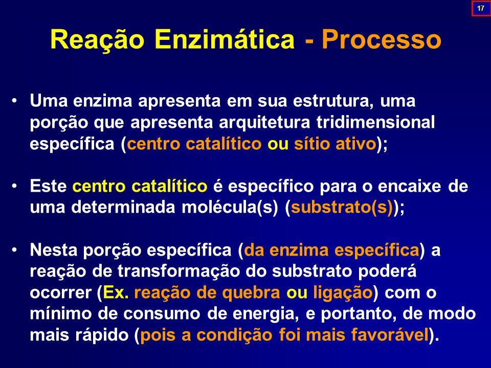 Reação Enzimática - Processo