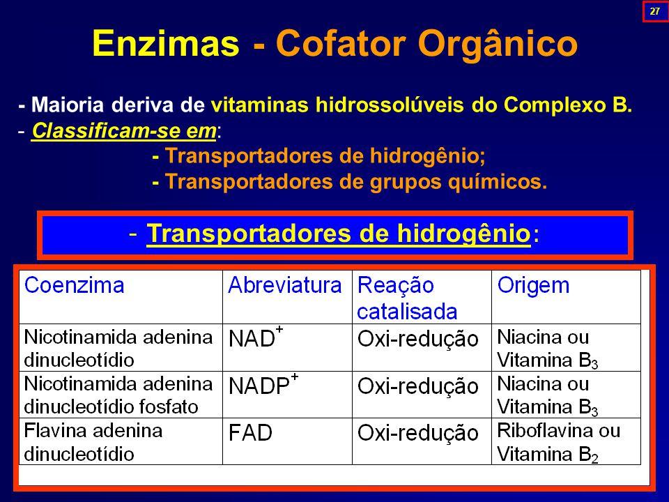 Enzimas - Cofator Orgânico