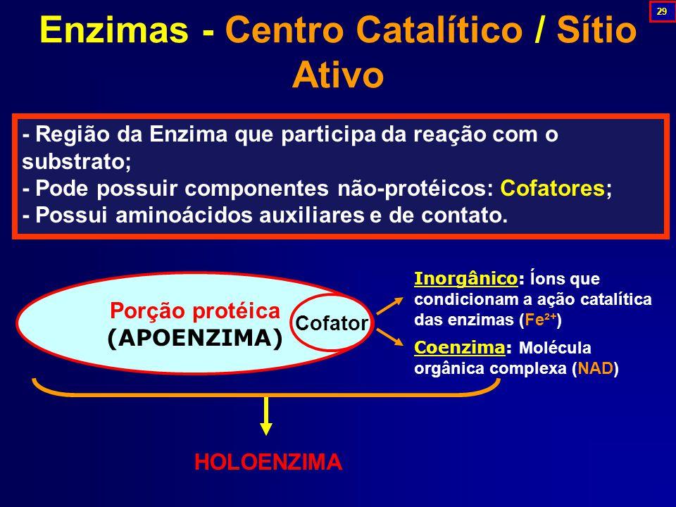 Enzimas - Centro Catalítico / Sítio Ativo