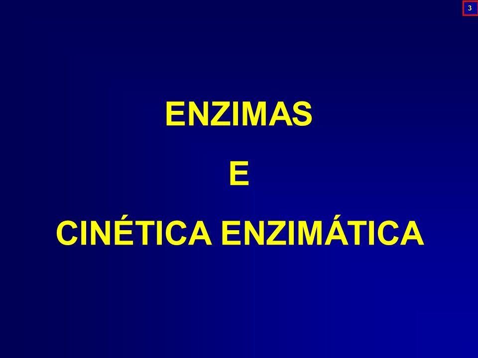 ENZIMAS E CINÉTICA ENZIMÁTICA