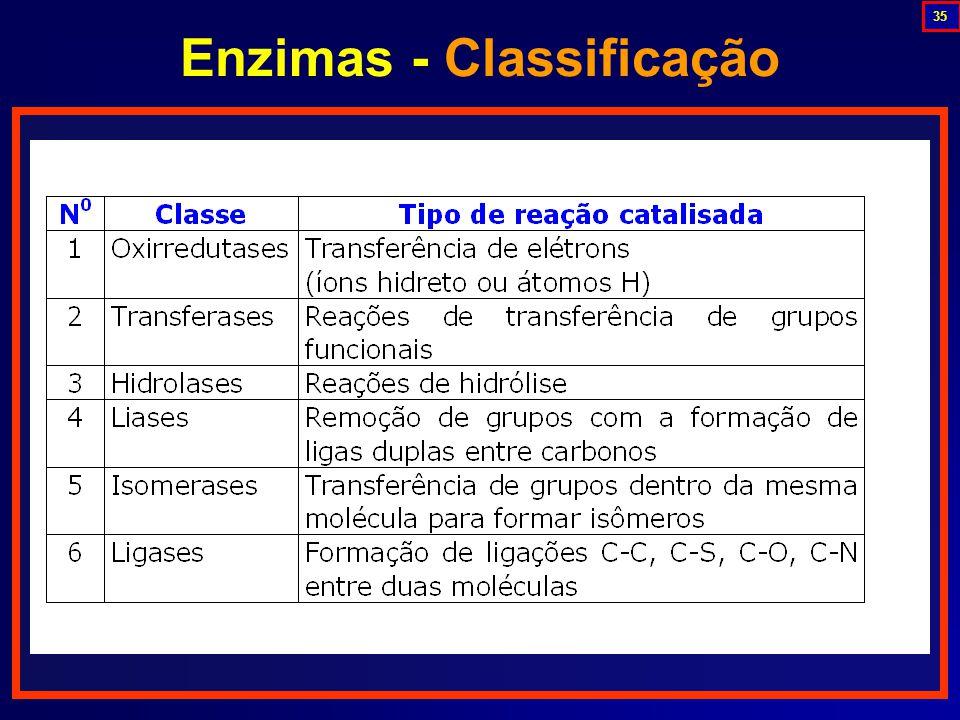 Enzimas - Classificação
