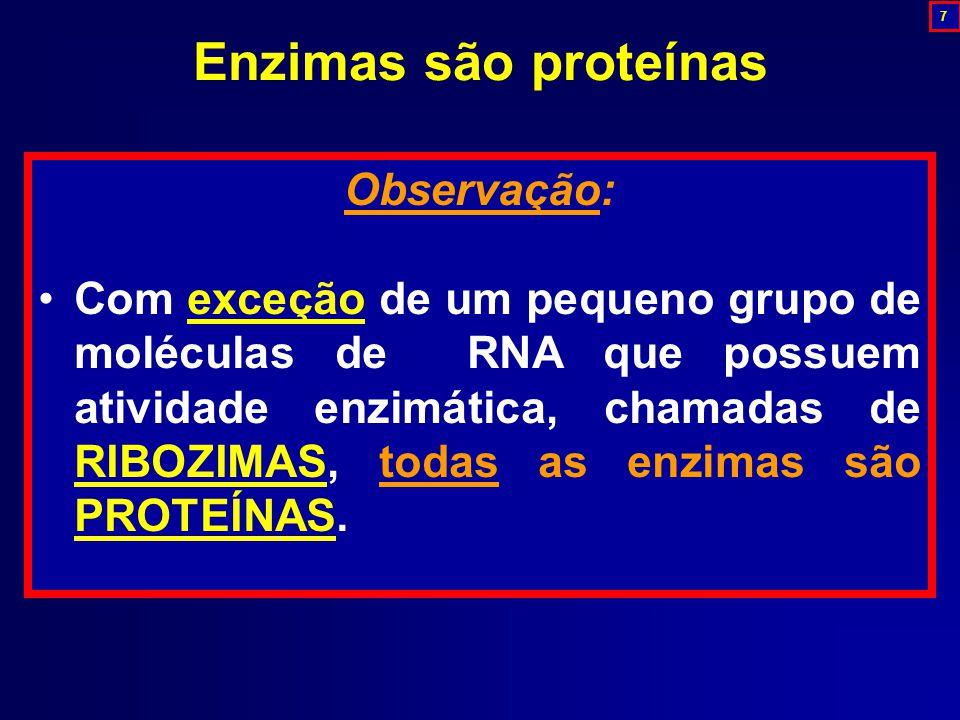 Enzimas são proteínas Observação: