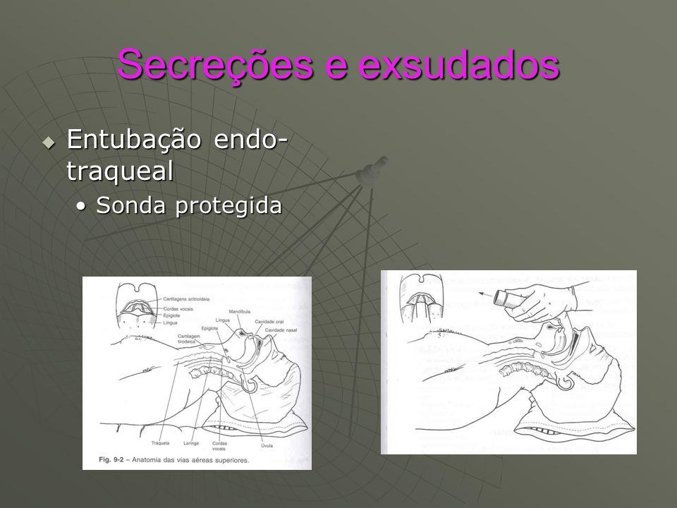 Secreções e exsudados Entubação endo-traqueal Sonda protegida