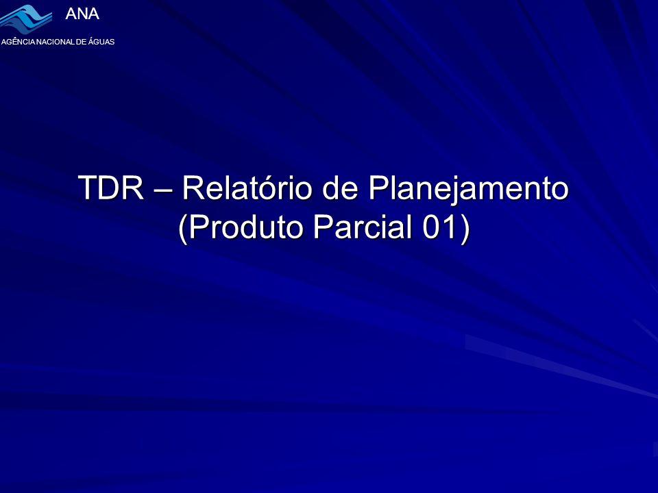 TDR – Relatório de Planejamento (Produto Parcial 01)